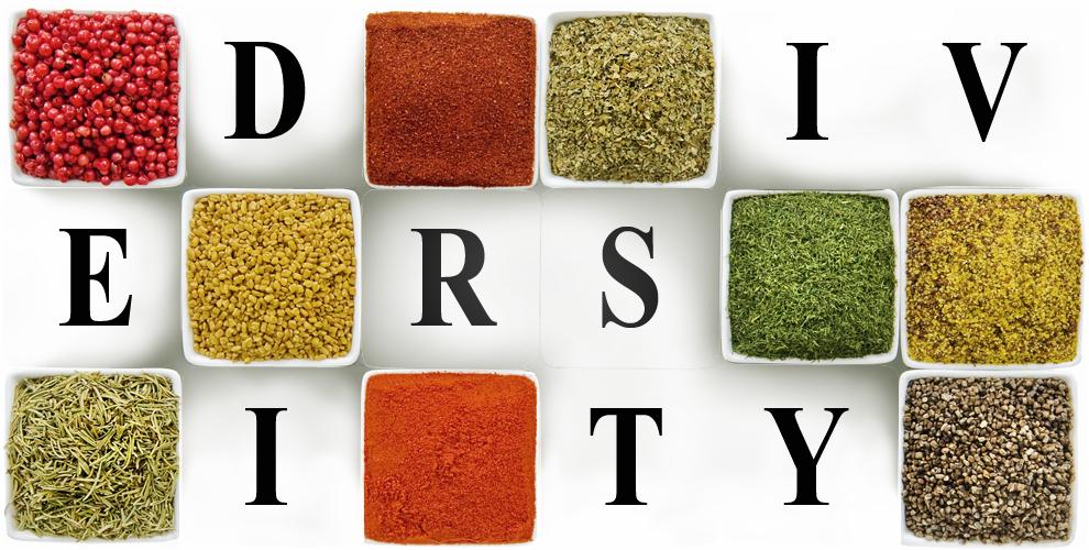 Diversity - Circuit Mag 22