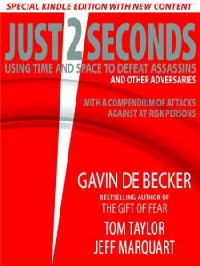 Just 2 Seconds Book Review